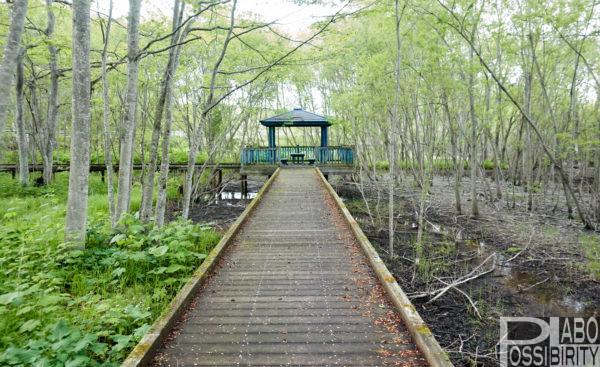 夏休みに行きたいおすすめ北海道キャンプ場!海水浴場,花火,川遊び,水遊び,体験プログラム,アスレチック
