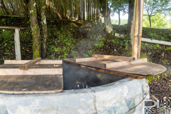 平取町ニセウエコランドオートキャンプ場,ホタル観賞,最寄りの温泉,道の駅情報