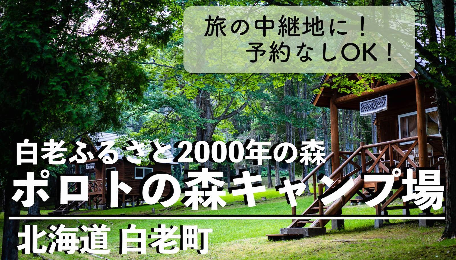 北海道白老ふるさと2000年の森ポロトの森キャンプ場,熊出没,料金,予約,サイト選び