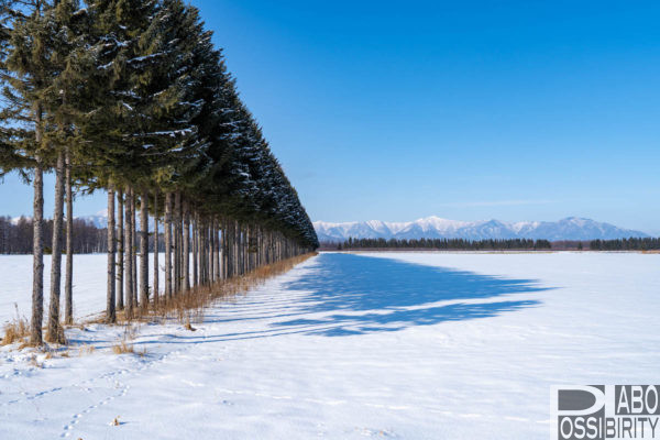snowpeakスノーピーク十勝ポロシリキャンプフィールド帯広市,冬キャンプ