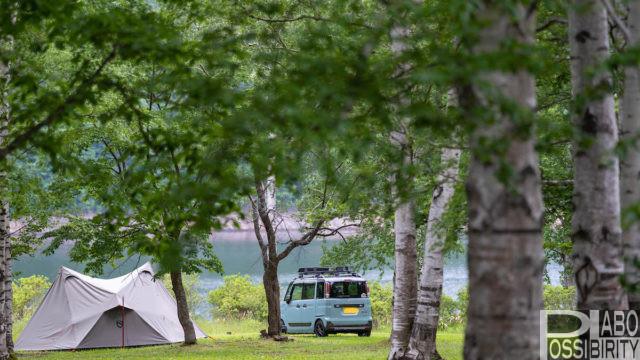 北海道格安キャンプ場,宿泊利用,1,000円以下,おすすめ,オートサイト,遊び屋コニファーキャンプ場清水町
