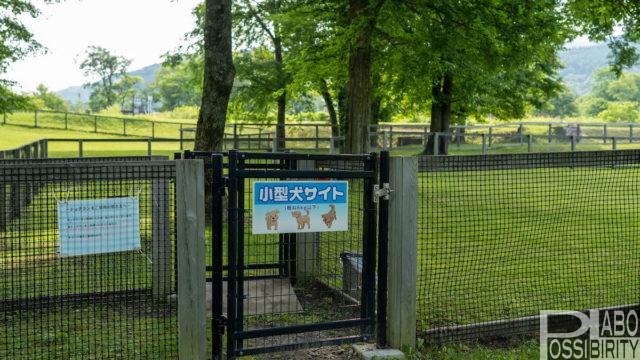 北海道キャンプ場,ペットOK,ドッグラン,犬同伴OK,サイトドックラン小型犬