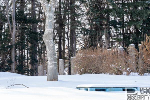 恵庭,メイプルキャンプ場,RVパーク,北海道,冬キャンプ,冬季営業,通年営業,新しい,パークゴルフ場,ドッグラン,ペットOK,オートキャンプ場,予約,電源