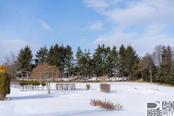 北海道キャンプ場,ペットOK,ドッグラン,犬同伴OK,サイト,ブログ