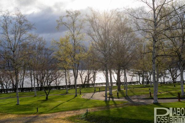 グリーンステイ洞爺湖,湖畔キャンプ,ブログ,サイト,焚き火,ペットOK,景色,予約,ロッジ,キャビン,バンガロー,写真